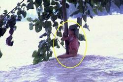 Cuộc sống sau 22 năm của cô bé 7 tuổi kiên cường ôm thân cây suốt 9 tiếng giữa trận 'đại hồng thủy' năm 1998