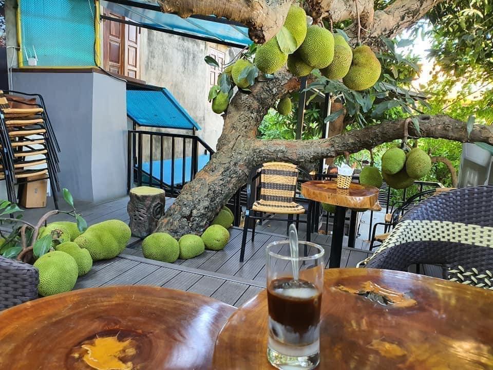 Truy lùng quán cà phê mít ở Tuyên Quang, nghe tên đã thấy thơm lừng-1