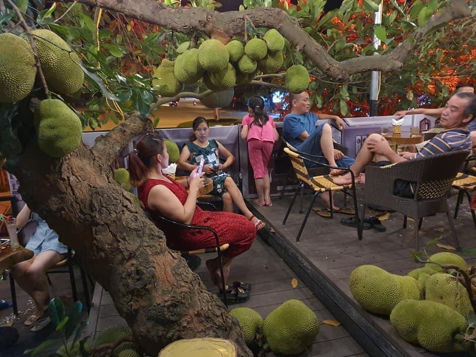 Truy lùng quán cà phê mít ở Tuyên Quang, nghe tên đã thấy thơm lừng-3