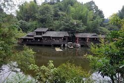 Bí ẩn chưa lời giải về ngôi làng 100 năm không có muỗi