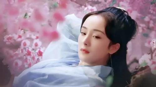 Dương Mịch tìm đạo diễn lớn mong hợp tác nhưng lại bị đuổi ngay trước cổng nhà?-3