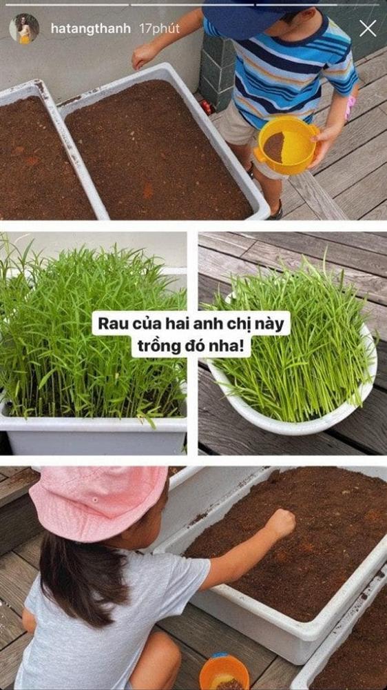 Nhóc tỳ nhà Hà Tăng vẫn giản dị theo mẹ trồng rau muống dù sống trong nhung lụa-1