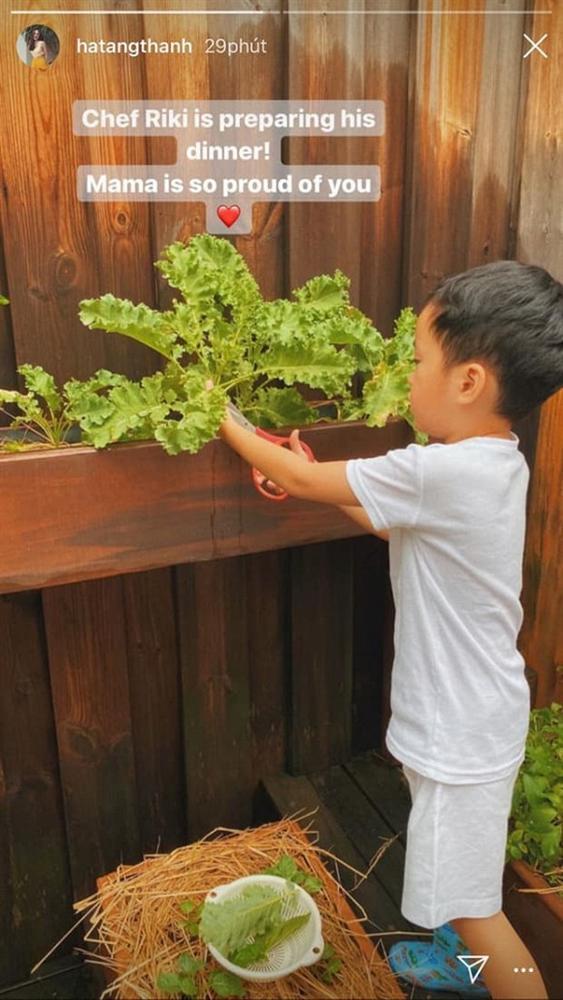 Nhóc tỳ nhà Hà Tăng vẫn giản dị theo mẹ trồng rau muống dù sống trong nhung lụa-3