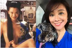 Á hậu Hong Kong lấy chồng vẫn đóng phim 18+, hết thời về làm nhà bảo tồn thiên nhiên