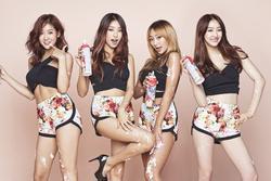 Những nhóm nhạc nữ Kpop giải tán rồi vẫn tình thương mến thương
