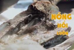 Đến TP.HCM ăn thử món cá lóc đặc sản đường phố