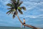 Truy lùng bằng được cây dừa có 'góc nghiêng thần thánh' giữa biển xanh, mây trắng Phan Thiết