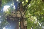 Nóng: Thủ tướng đồng ý giảm tiền điện, giá điện vì Covid-19-2