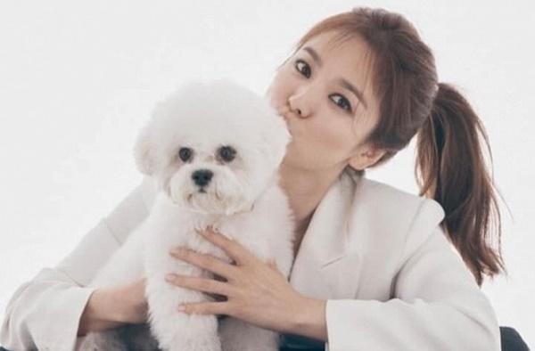 Song Hye Kyo bất ngờ lộ diện hậu tin đồn Song Joong Ki có người mới, truyền tải thông điệp đặc biệt-2