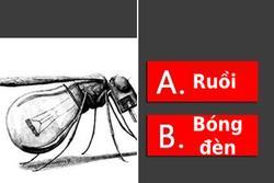 Trắc nghiệm: Đây là con ruồi hay chiếc bóng đèn, câu trả lời sẽ tiết lộ tính cách của bạn?