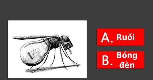 Trắc nghiệm: Đây là con ruồi hay chiếc bóng đèn, câu trả lời sẽ tiết lộ tính cách của bạn?-1