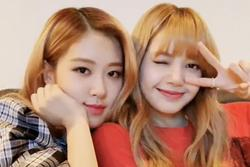 Tình bạn đáng yêu đến 'tan chảy' của Lisa và Rose BlackPink
