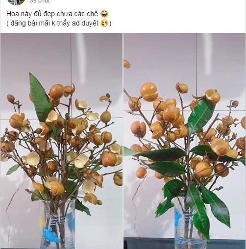 Thanh niên cứng làm hoa nhãn sáng tạo hết phần thiên hạ khiến cao thủ cũng xin quỳ-1