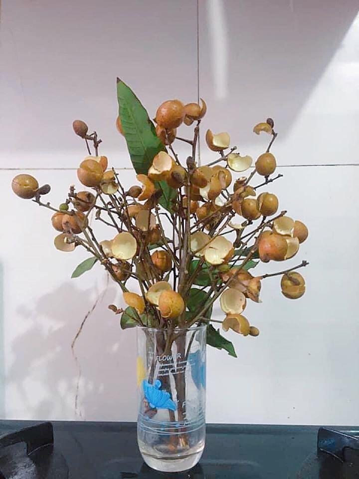 Thanh niên cứng làm hoa nhãn sáng tạo hết phần thiên hạ khiến cao thủ cũng xin quỳ-2
