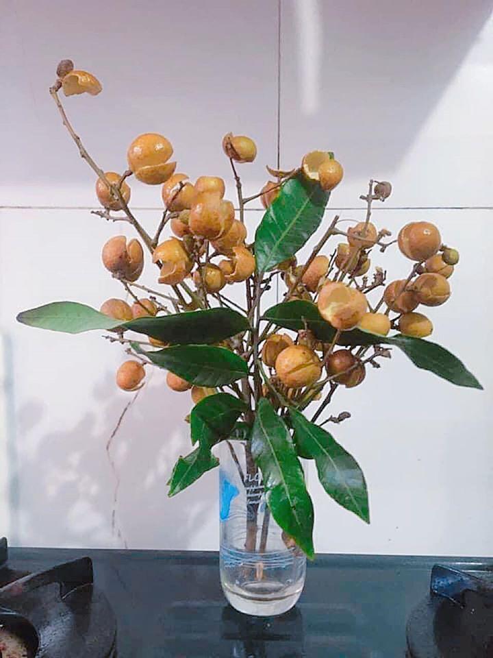 Thanh niên cứng làm hoa nhãn sáng tạo hết phần thiên hạ khiến cao thủ cũng xin quỳ-3