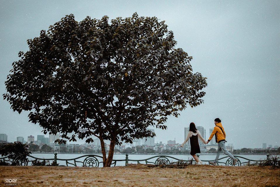 Không đến được Đà Lạt vẫn check-in cháy máy cây cô đơn ở ngay Hà Nội-2