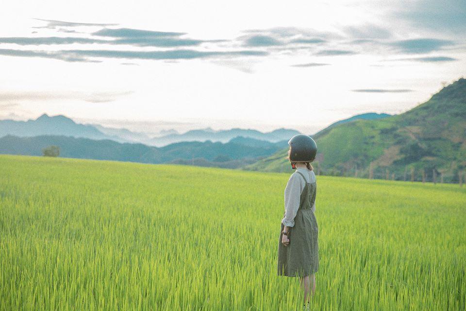 """di qua mua ha moc chau 11 - Theo chân cô gái 9x tới Cao nguyên Mộc Châu cùng bộ ảnh '' Đi qua mùa hạ """""""