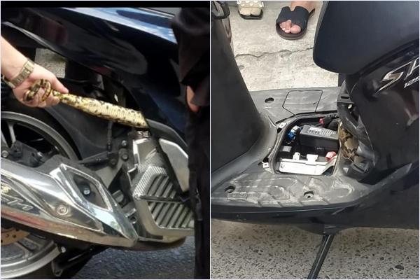 Hú hồn cảnh tượng giải cứu bé Na béo ú bị mắc kẹt trong động cơ xe máy-1