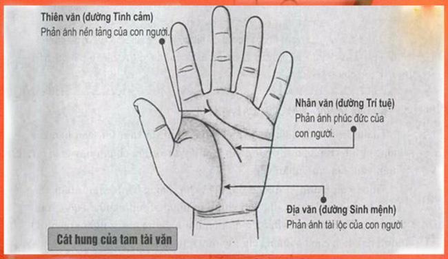 5 điểm cực hiếm trên bàn tay báo hiệu người khổ trước sướng sau-2