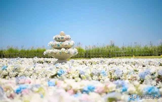 6 đám cưới ngập trong biển hoa bạc tỷ của showbiz Hoa ngữ-2