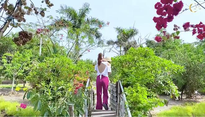 Choáng ngợp với miệt vườn thẳng cánh cò bay của dàn sao Việt-8