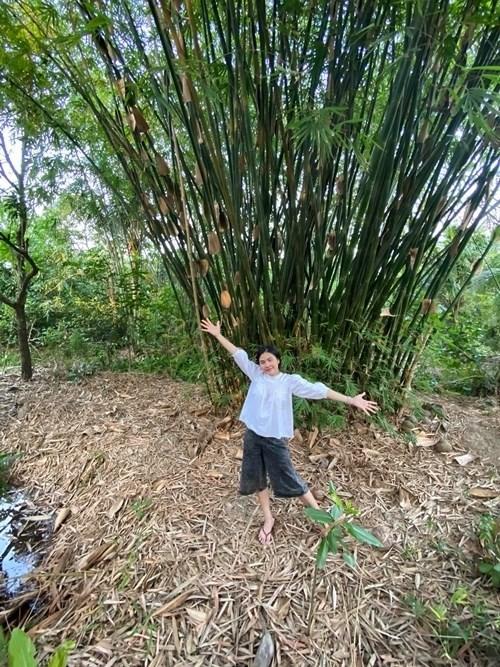Choáng ngợp với miệt vườn thẳng cánh cò bay của dàn sao Việt-15