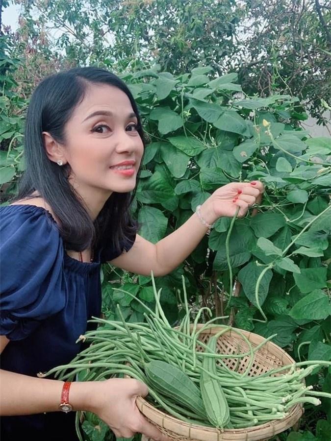 Choáng ngợp với miệt vườn thẳng cánh cò bay của dàn sao Việt-17