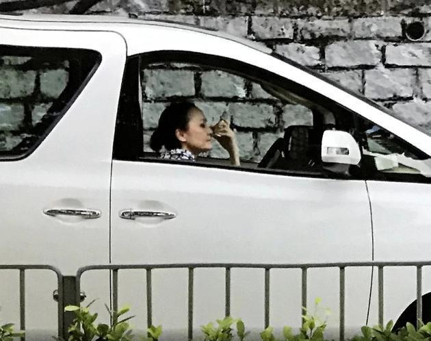 Mẹ Trương Bá Chi lái taxi kiếm tiền-2