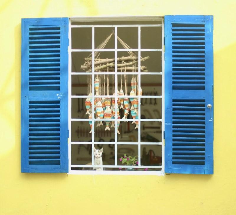 Nữ thiết kế bỏ Hà thành phố thị về quê xây ngôi nhà biển xanh, ngày ngày trồng rau nuôi cá-9