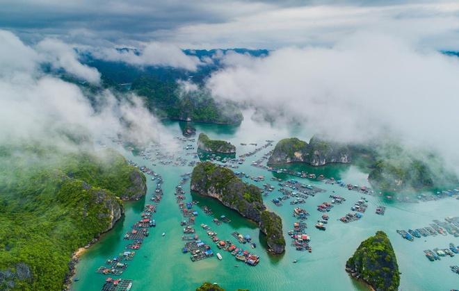 Hải Phòng đề nghị doanh nghiệp du lịch chia sẻ khó khăn do Covid-19-1