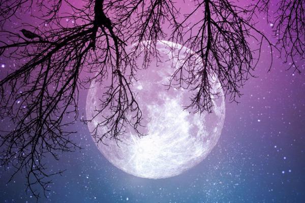 Trăng tròn Bảo Bình và những biến động, xáo trộn bất thường trong cuộc sống của 12 chòm sao 2 tuần tới-2