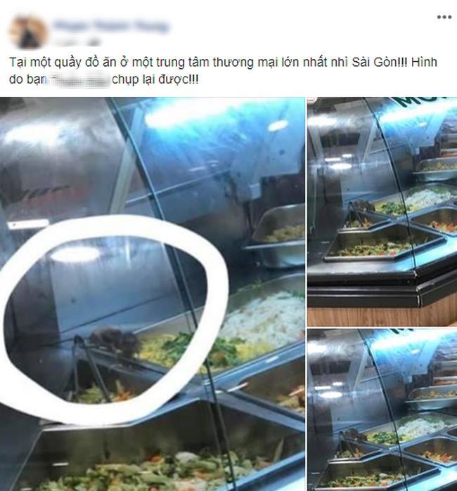 Kinh hãi hình ảnh 2 chú chuột vô tư đánh chén trong quầy thức ăn bán sẵn tại trung tâm thương mại nổi tiếng ở Sài Gòn-1
