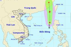 Áp thấp nhiệt đới có khả năng mạnh lên thành bão số 3 gây mưa dông, gió giật