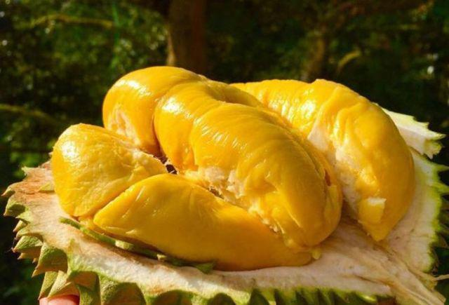 Nhồi máu cơ tim vì ăn sầu riêng và uống sữa: Những thực phẩm ăn với sầu riêng cực độc-4