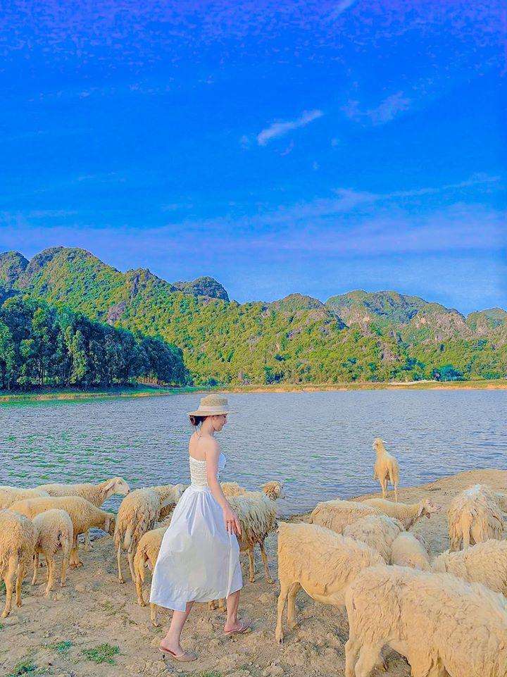 Nghìn góc sống ảo chỉ tốn có 50k đẹp như tranh ở đồng cừu Ninh Bình-7