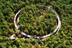 Con đường xoắn ốc ẩn giữa rừng cây ở Bỉ