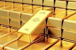 Giá vàng 14/8: Hồi phục mạnh mẽ, tăng 2 triệu đồng/lượng chỉ qua 1 đêm