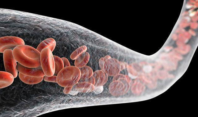 Muốn biết tuổi thọ hãy nhìn xuống chân: 2 dấu hiệu chứng tỏ bạn tuổi thọ kém, nhiều bệnh tật-2