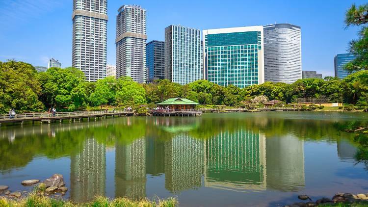 Những công viên đẹp nhất thủ đô Tokyo-1