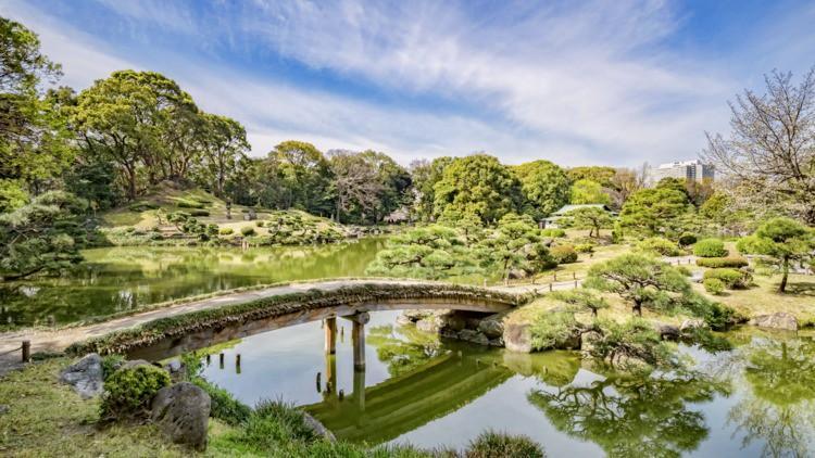 Những công viên đẹp nhất thủ đô Tokyo-4