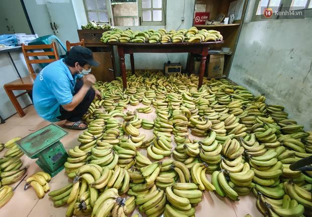 Người Sài Gòn góp cả chục tấn rau củ cùng hàng tỷ đồng, cứu đói bầy thú ở Thảo Cầm Viên trong mùa dịch Covid-19-4