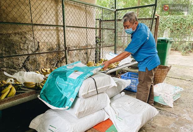 Người Sài Gòn góp cả chục tấn rau củ cùng hàng tỷ đồng, cứu đói bầy thú ở Thảo Cầm Viên trong mùa dịch Covid-19-8