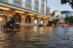 Trung tâm Hà Nội ngập lụt, đôn hoa nổi bềnh phềnh như lục bình vì mưa lớn