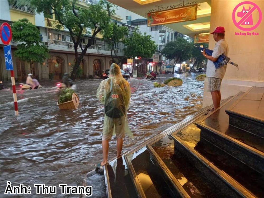 Trung tâm Hà Nội ngập lụt, đôn hoa nổi bềnh phềnh như lục bình vì mưa lớn-12