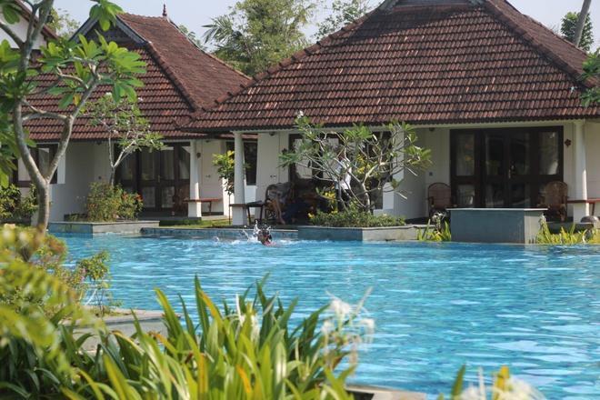Khu nghỉ dưỡng Ấn Độ biến hồ bơi thành bể nuôi cá-3