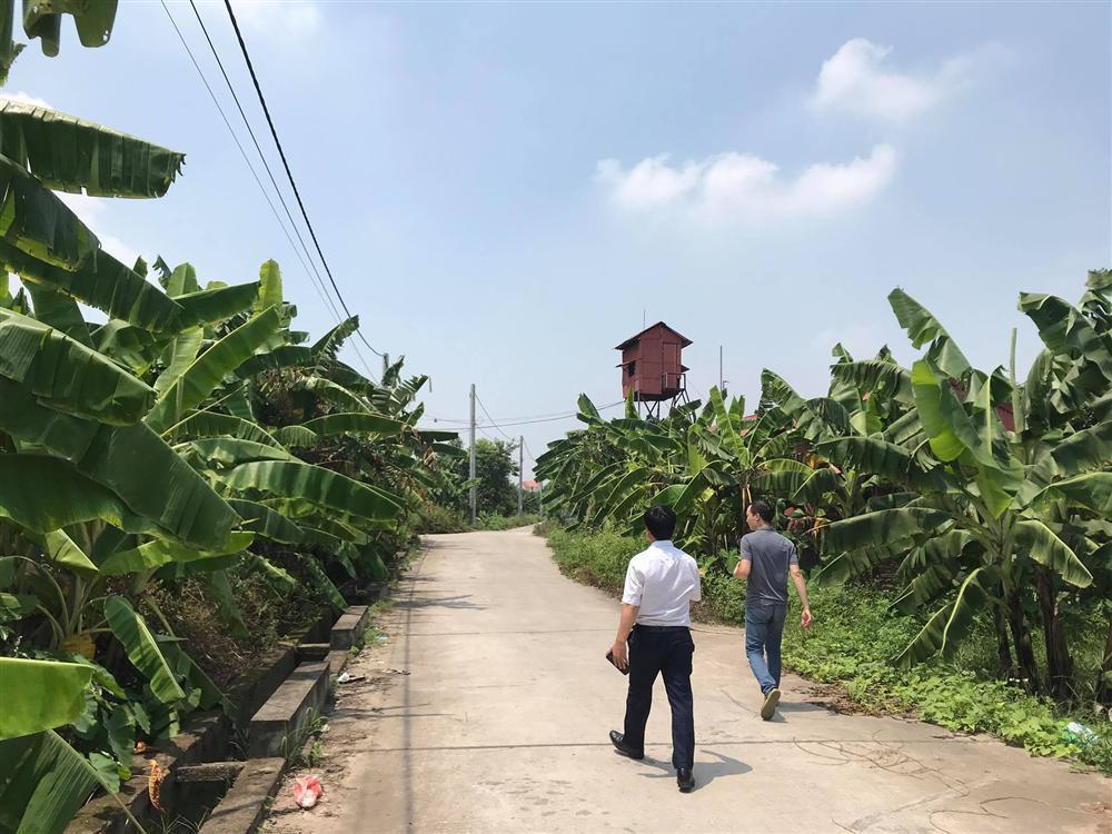 NÓNG: Bắt được đối tượng hiếp dâm bé gái ở vườn chuối tại Hà Nội-1