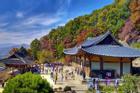 Tận hưởng trọn vẹn sự bình yên trong một lần đến vùng nông thôn ở Hàn Quốc