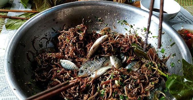 Những màn câu like kinh hãi của Youtuber Việt khi ăn tất tật từ cá sống đến gỏi côn trùng-6