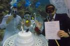 Đám cưới '1-0-2': Đáy biển thành lễ đường, cô dâu chú rể thề mãi yêu qua bình dưỡng khí