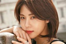 'Đả nữ' Ha Ji Won và những sự thật có thể bạn chưa biết
